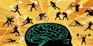 رشته تربیت بدنی و علوم ورزشی